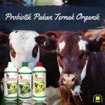Produk NASA TANGGUH Probiotik Meningkatkan Hasil Budidaya Ternak